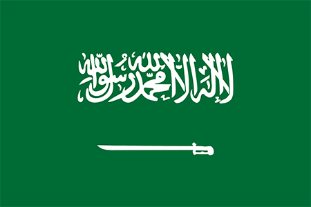 Saudi Arabia background screening services